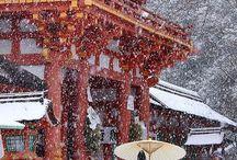 Japan, my love