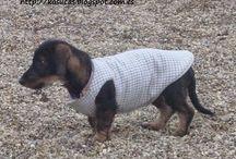 roupinha de cachorro