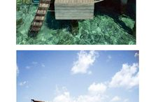 Amazing houses/pools