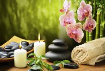 Massase and Spa Oils / Rejuvenating mind and body is the right method for getting lost vitality back again and feel more invigorated than any time in recent memory. For this, nothing can be a superior path than back massage and spa that has been being used for a long time.