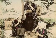 Japanese traditional