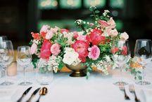 Makiivka Estate Farm Weddings & Elopements / Delightful Gatherings