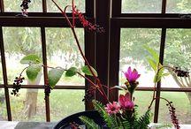 oriental arrangement
