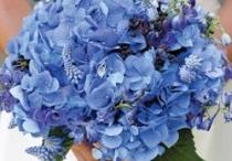 something of blue