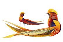 Pheasants, Partridges, Turkeys & Grouse