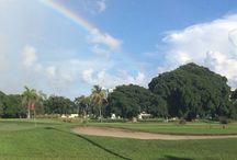 Florida Par 3 and Executive Golf Courses / Florida Par 3 and Executive Golf Courses
