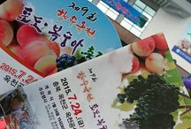 Korea travel / 여행,볼거리,맛집,가볼만한 곳 체험