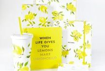 Our Favorite Lines: Kate Spade / Lifeguard Press