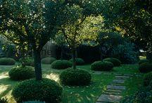 Jardin et ext