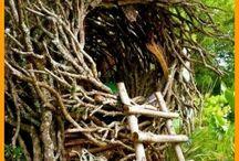 Tree house ❤️