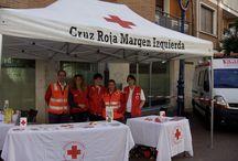 Cruz Roja Bizkaia 2015 / Actividades de los diferentes Planes y Proyectos de Cruz Roja Bizkaia durante el año 2015