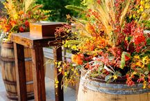 Fabulous Fall / Fall harvest ideas and inspriation