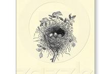 Nest workshop