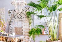 Tropenflair / Wir zeigen euch das Paradies! Exotische Prints, knallige Farben und natürliche Materialien zaubern den Regenwald in euer Wohnzimmer!