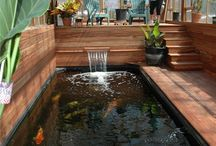 fish pond