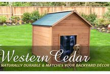 Dog Houses / Dog house ideas for Sadie / by The Apple Barrel