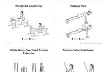 Female Bodybuilding / by Melissa Anciaux Fitness