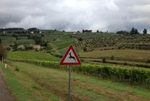Toscane Chianti / Vakantie