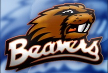 Oregon State Beavers / by Barb Nash Shanks