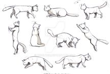 Animal referensio