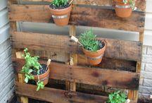 garden idea