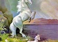 magical unicorns