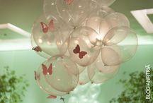 festa livia borboleta