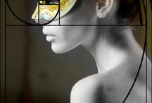 Photography / fibonacci