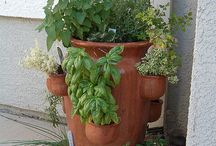 Herb garden  / Inspiration for small space herb garden. Am hoping to get inspired and start one myself..