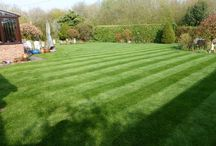 Lawn Care Yorkshire / The Greensleeves Lawn Care team in Yorkshire provide lawn treatments to thousands of lawns across the area. Whether your lawn needs full renovation, or just a little TLC, we can help.