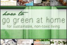 Sustainable Living / by Kendra Martz