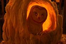 Halloween FUN! / by Patty Sharwarko