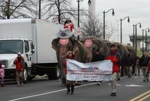 2013 Elephant Walk / Feld Entertainmnet Presents: Ringling Bros. and Barnum & Bailey Circus: Built to Amaze.