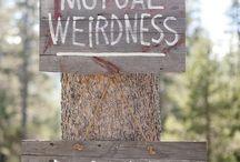 Wedding creative boards