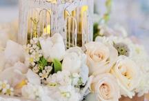 Wedding / by Kathy King