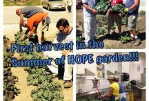 2014 Summer of HOPE Garden