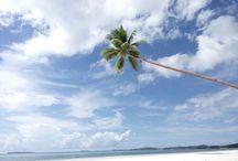 pantai, indonesia maluku tenggara / Kota tual, maluku tenggara