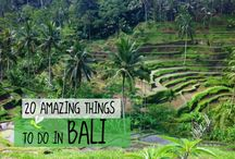 Bali / Ideas of What to see & do in Bali