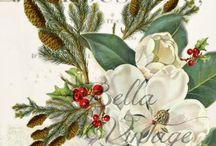 GLAMPER: Magnolia Rose