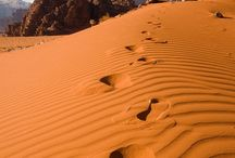 desert / by ilvi