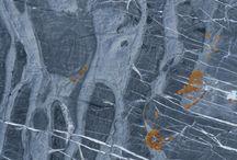 lichens/limestone