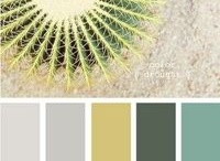 Inspiration Color