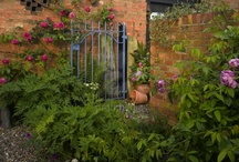 Ferns and Roses / by Karen Henry Clark