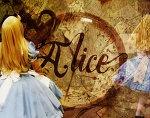 Alice / by Shannon Bradley