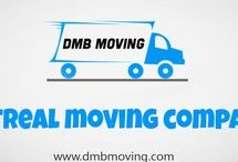 Petits Demenagements / Let's take a closer look at some of the things you will want to keep in mind as you search for an office mover. Check this link right here http://dmbmoving.com/fr/commercial/ for more information on Montreal Moving Companies. Follow us: https://goo.gl/ZrC9I4 https://goo.gl/mn8tMN https://goo.gl/UIheQv https://goo.gl/aMHrqy