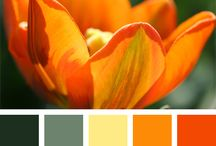Väripaletit