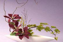 aranjamente flowers