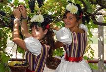 Madeira - Wine Festival