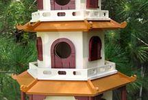 Birds guest home