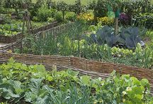 safe garden
